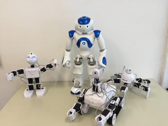Fritidshold robotprogrammering billede